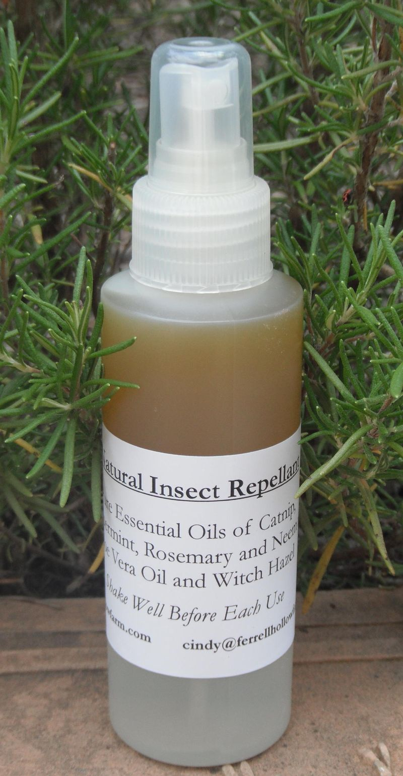 Insect Repellent 6-26-10